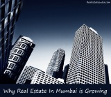 Why Real Estate In Mumbai isGrowing