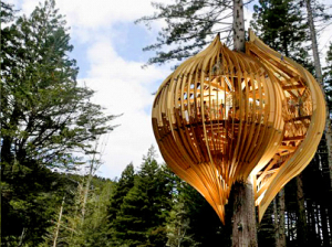 redwoods treehouse restaurant